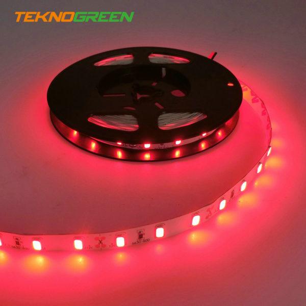 TeknoGreen TGSL-5630R Job İç M. Kırmızı Şerit Led
